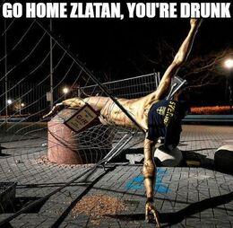 Go home funny memes